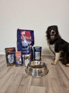 Border Collie sitzt neben seinem Futterpaket von Henne Pet Food