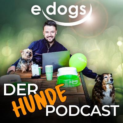 Hunde Podcast edogs