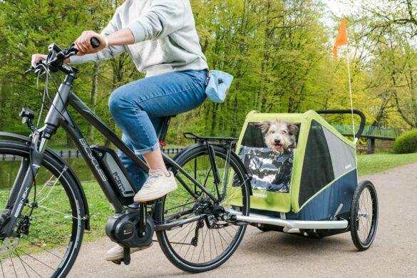 Fahrradfahren mit Hund: Anhänger