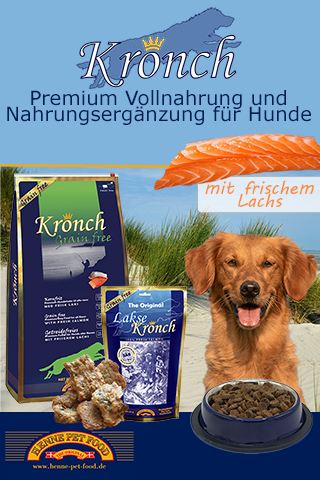 Kronch_Mobile Interstitial Ad_EDOGS