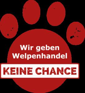 Sicherer Hundekauf: Wir geben Welpenhandel keine Chance