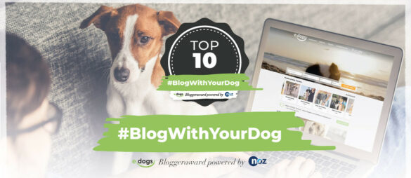 blogwithyourdog-top-10