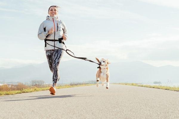 Frau macht Canicross mit Hund