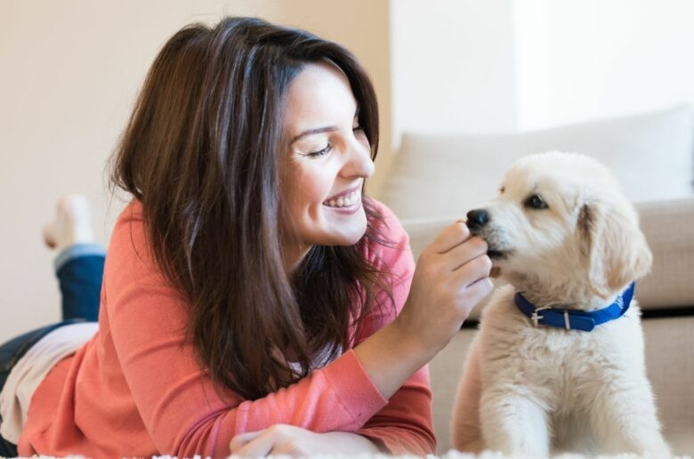 Kühlhalsband Hund Test: Frau spielt mit Welpen