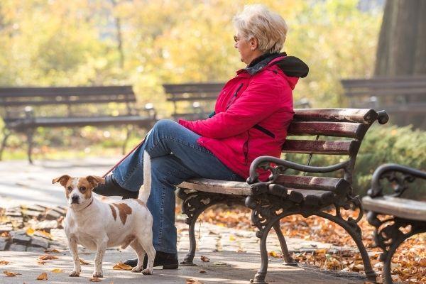 Hunderassen für Senioren: Seniorin mit Hund auf einer Parkbank