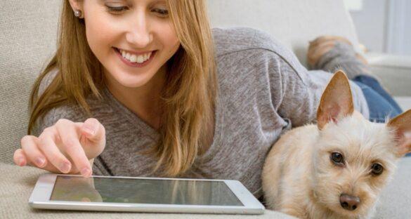 Die besten Hundefilme: Frau mit Hund auf Sofa