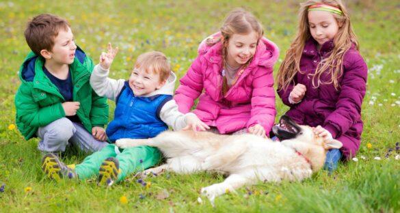 Kinderfreundliche Hunderassen: Kinder spielen mit einem Hund auf dem Rasen